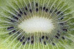 Kiwi Chinese gooseberry Royalty Free Stock Photography