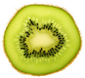 Kiwi fruit in thin slice. Close up on a kiwi fruit in thin slice Stock Image