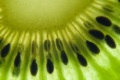 Kiwi closeup Stock Images