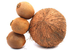 Kiwi and coconut Royalty Free Stock Photos