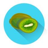 Kiwi Colorful Fruit Icon Photos stock