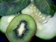 Kiwi and cucs. Kiwi and cucumbers with leaves Royalty Free Stock Images