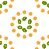 Kiwi de modèle, orange, pêche Fruit de vecteur Photographie stock libre de droits