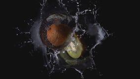 Kiwi del verde de Brown que cae en chapoteo del agua fotos de archivo