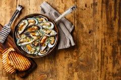Kiwi delle vongole delle cozze in salsa di formaggio blu fotografia stock