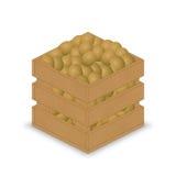 Kiwi in der hölzernen Kiste Stock Abbildung