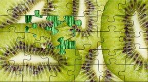 Kiwi des puzzles Images stock