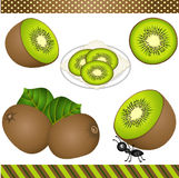Kiwi Digital Clipart Stock Image