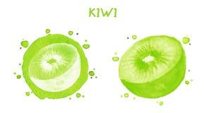Kiwi dolce Illustrazione dell'acquerello Immagini Stock