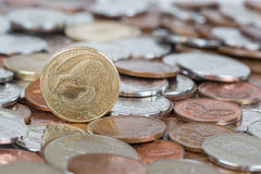 Kiwi Dollar Royaltyfri Bild
