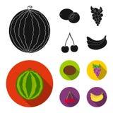 Kiwi, druiven, kers, banaan Vruchten geplaatst inzamelingspictogrammen in het zwarte, vlakke Web van de de voorraadillustratie va vector illustratie