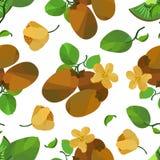 Kiwi e fiore senza cuciture del modello illustrazione di stock