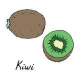 Kiwi en gesneden stuk Stock Foto