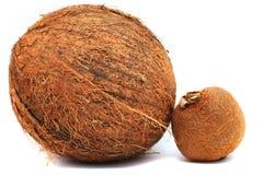 Kiwi en kokosnoot Stock Foto's