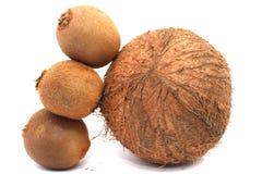 Kiwi en kokosnoot Royalty-vrije Stock Foto's