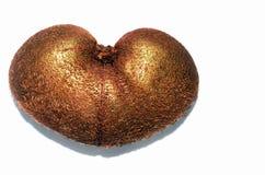 Kiwi en la forma de un corazón fotografía de archivo