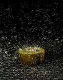 Kiwi en la lluvia Fotos de archivo libres de regalías
