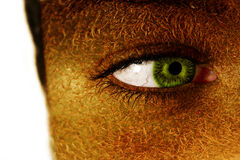 kiwi för framsidakvinnligfrukt Arkivfoton