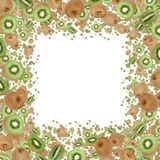 Kiwi Frame (on white) Royalty Free Stock Image