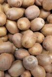 Kiwi. Fresh Kiwis on Farmers Market in Italy stock photo