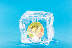 Kiwi Frozen Inside Ice Cube Stockfotografie