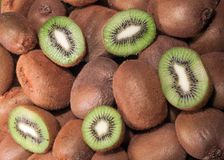 Kiwi Fruit. Whole and sliced - background Royalty Free Stock Photo