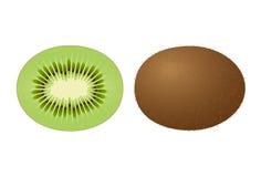 Kiwi Fruit. Vector of a whole kiwi fruit and a half kiwi fruit Stock Image