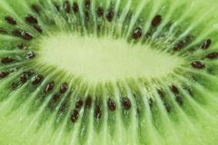 Kiwi fruit as background. macro. Stock Photography