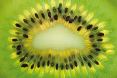 Kiwi fruit background Stock Photos