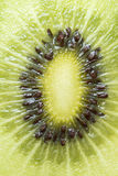 Kiwi Fruit. Close up on a kiwi fruit Royalty Free Stock Image