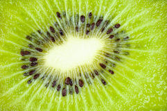 Kiwi Fruit Close Up Background Royalty Free Stock Photography
