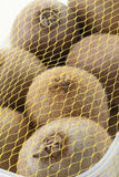 Kiwi fruit covered with net Stock Images