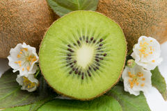 Kiwi - fruit, flowers and leaves Royalty Free Stock Photo