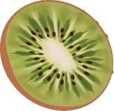 Kiwi, Fruit, Fresh, Green, Tasty Stock Images