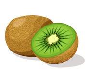 Kiwi fruit. Fresh kiwi fruit   illustration Royalty Free Stock Photography