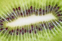 Kiwi fruit with green pulp and black seeds Royalty Free Stock Photography