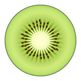Kiwi fruit isolated on white background Stock Photos