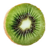 Kiwi fruit isolated on white background, macro. Royalty Free Stock Photos