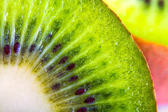 Kiwi fruit macro Stock Image