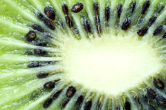 Kiwi Fruit Macro Isolated Stock Images