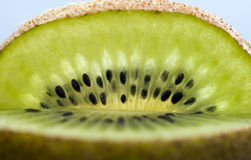 Kiwi Fruit Macro Royalty Free Stock Image