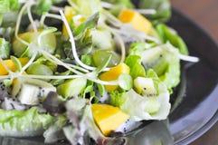 Kiwi fruit , mango and  lettuce  salad. Kiwi fruit , mango , lettuce and sunflower sprout salad Royalty Free Stock Photos