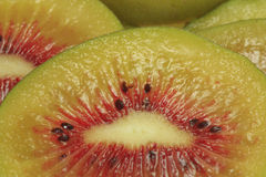 Kiwi fruit 1375 Stock Images