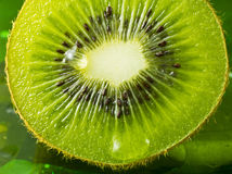 Kiwi fruit nice detail Stock Photography