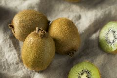 Kiwi Fruit organico verde crudo Fotografia Stock