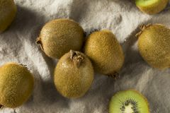Kiwi Fruit organico verde crudo Immagine Stock Libera da Diritti