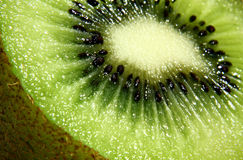 Kiwi fruit pulp cutout. Kiwi fruit with shell and pulp well lit in a closeup Stock Images