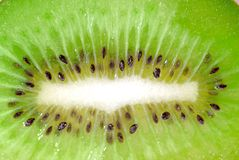 Kiwi fruit Series 04 Royalty Free Stock Photo