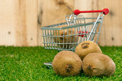 Kiwi fruit and shopping cart on a lawn Stock Photo
