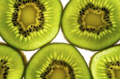 Kiwi Fruit Slice. Backlit slice of Kiwi Fruit, isolated against white stock photography
